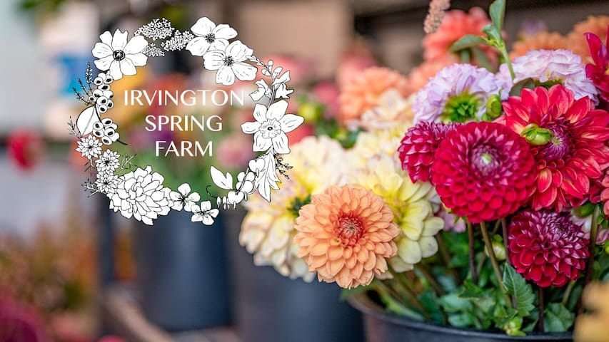 Flower Farm Suite: Your Nature Retreat in the City