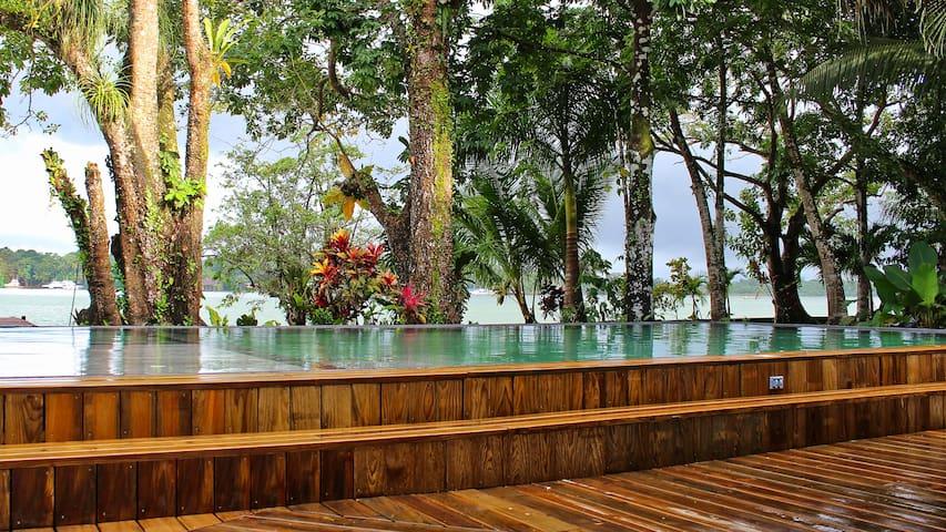 La piscina tiene un área para asolearse, otra área para niños y el área profunda.