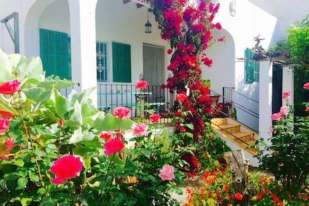 Nice Casa big garden 350mtrs to sea - Santa Eulalia del Rio