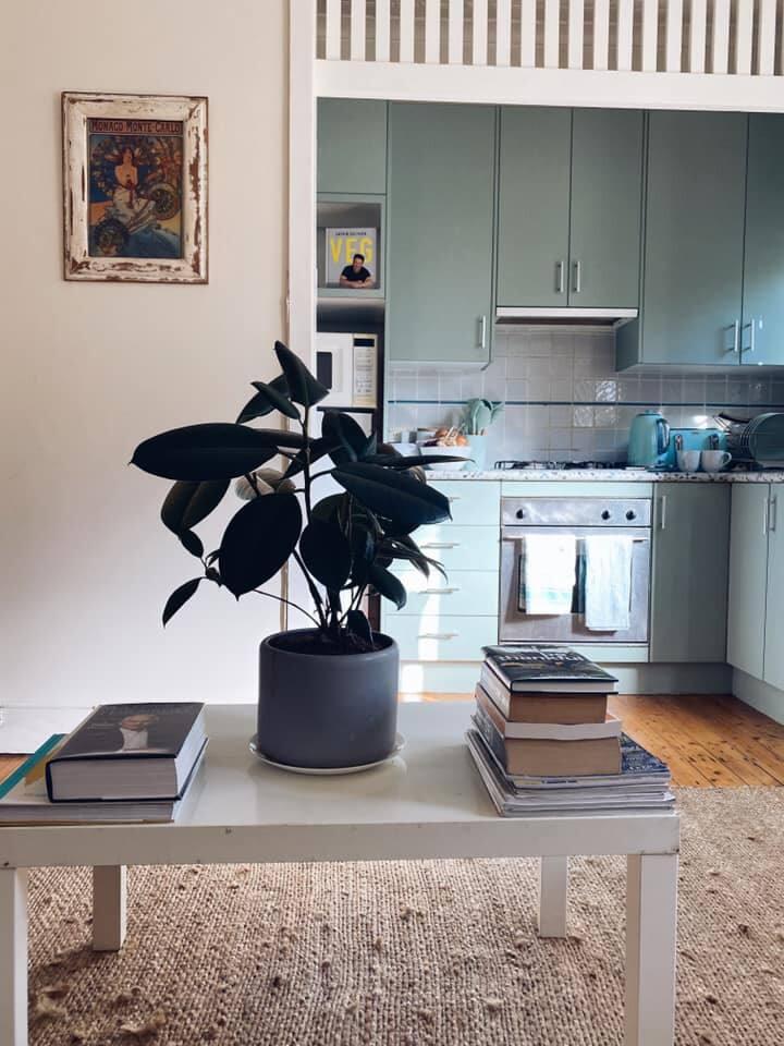 Beautiful Bondi apartment with sunroom