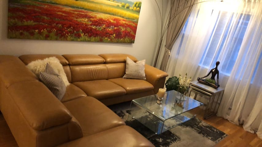 Entire 2 Bed room Apt near  mid town NYC
