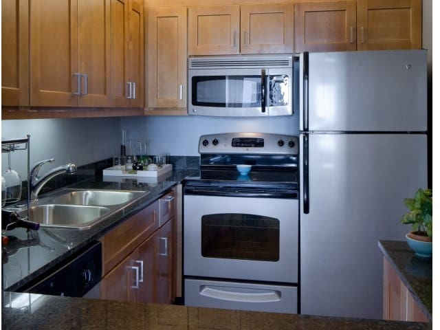 Downtown Chicago King 1 bedroom Apartment