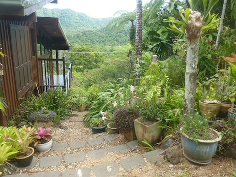 Daintree Holiday Homes - The Folly