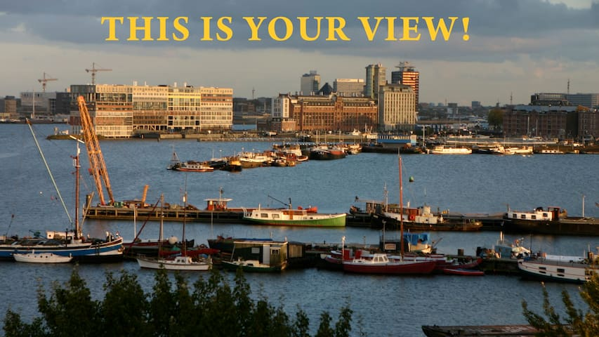 This is your view