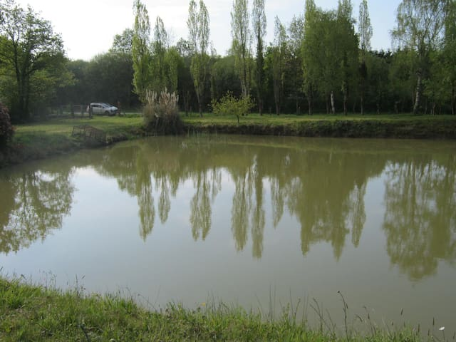 terrain de loisirs avec étang et bungalow