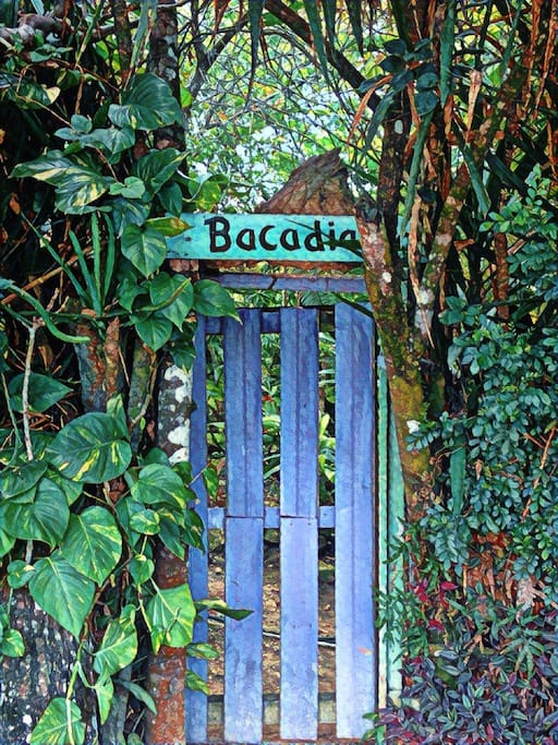Entrance to Bacadia