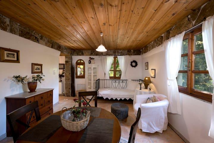 Σπίτι του Βασίλη-Vasili's House