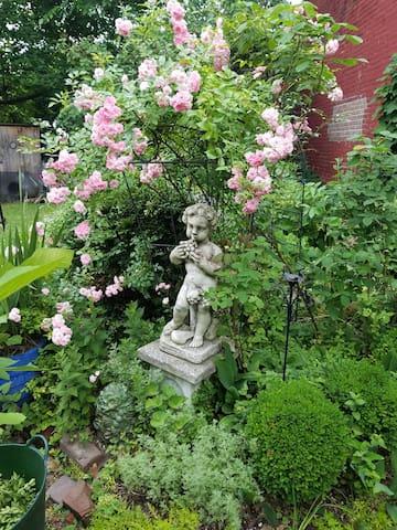Bacchus in the garden.