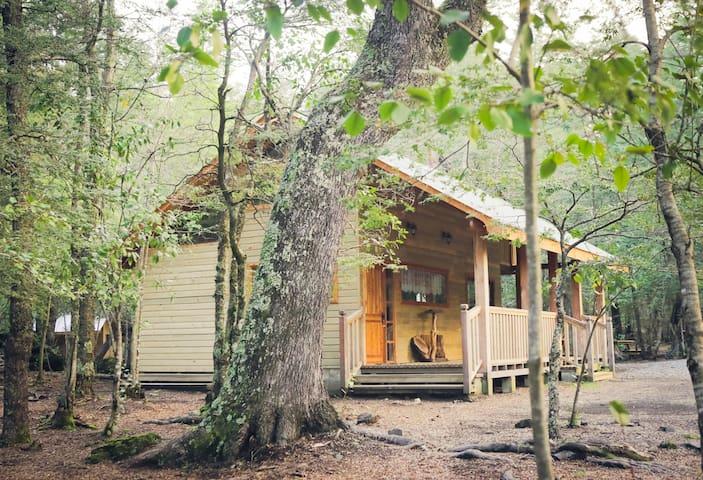 Llaima Camp, cabaña para 4  a 4 km. de Conguillio