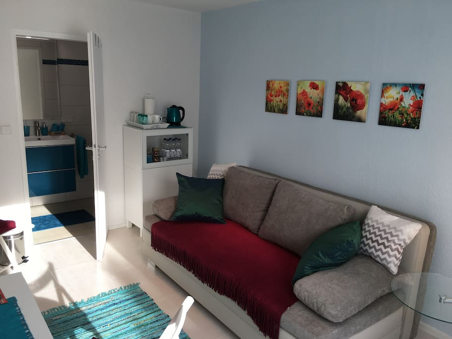 Wohn-/Schlafzimmer mit bequemem Sofa/Doppelbett