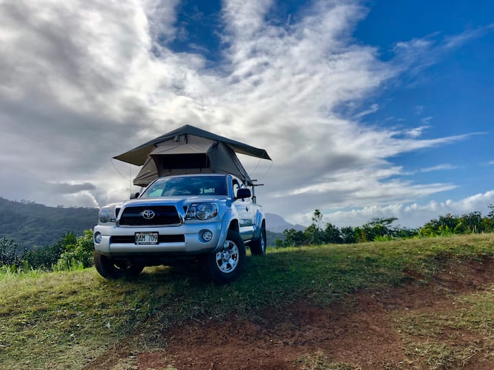 Wild Kitty - Our Magic Tacoma with a Rooftop Tent