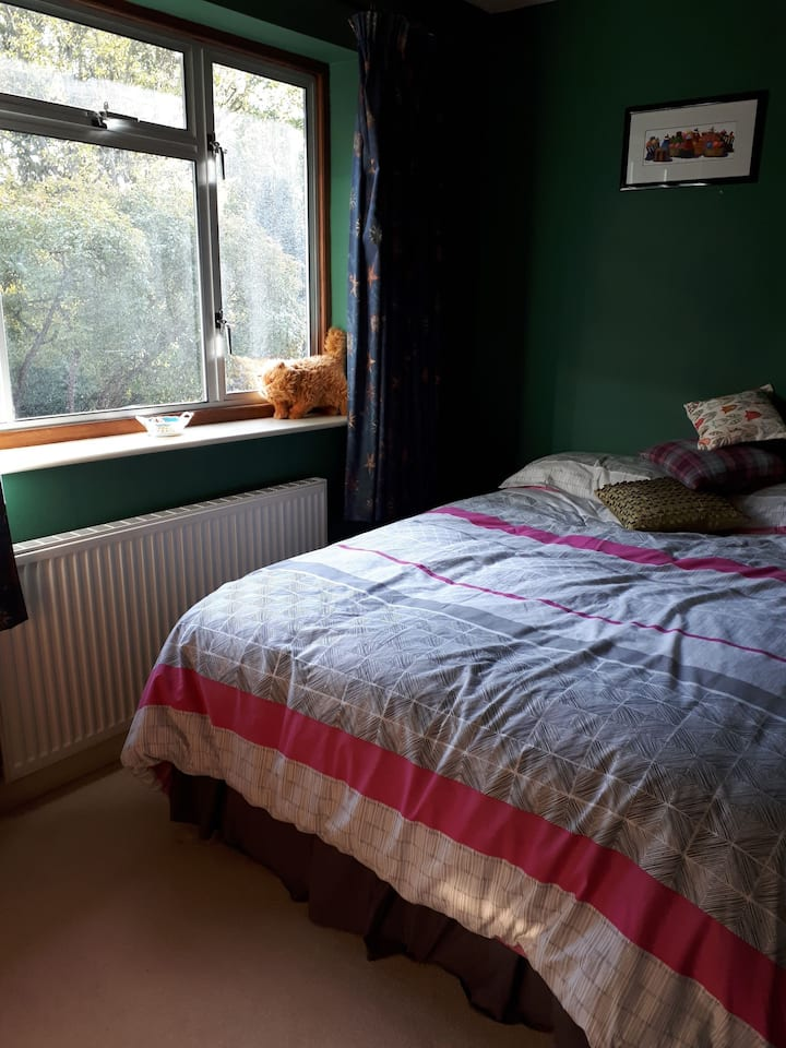 Lovely quiet double room great location Bristol
