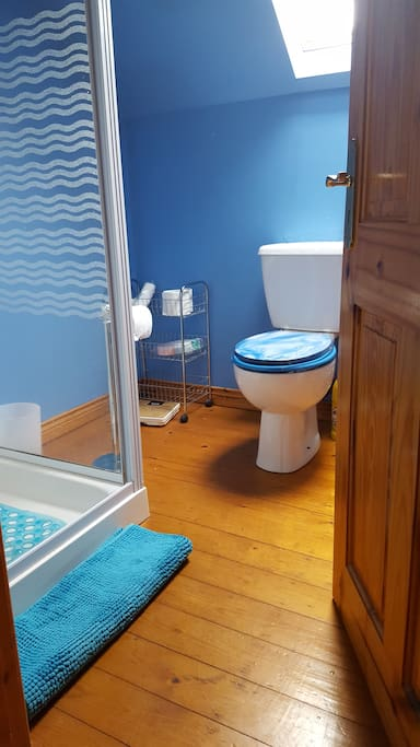 The bright, blue shared shower room.  There are some lotions and potions provided.
