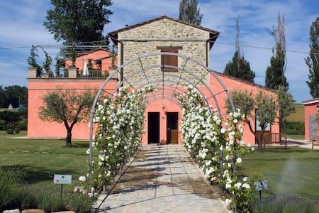 Agriturismo Casale Le Selvette - Pilonico Paterno