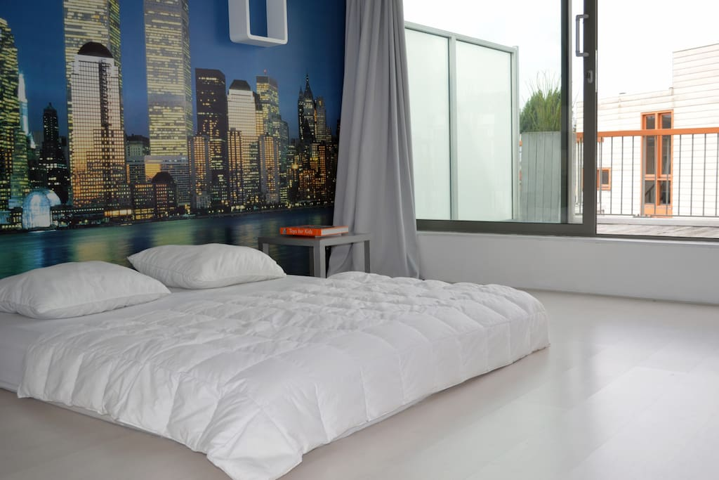 Bright and spacious bedroom with roof top terrace