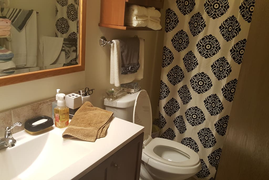 Guest bathroom with updated fixtures. Towels and toiletries will be provided.