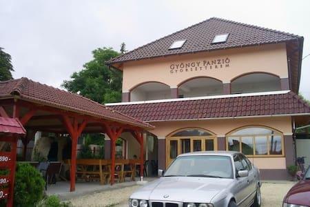 Gyöngy Panzió és gyorsétterem - Velence - Хостел