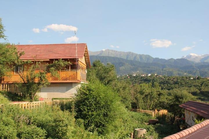 Almaty mountains home #3