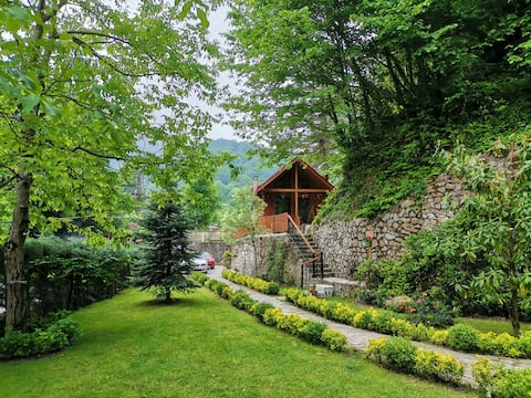 Ormanın içinde modern ahşap ağaç ev