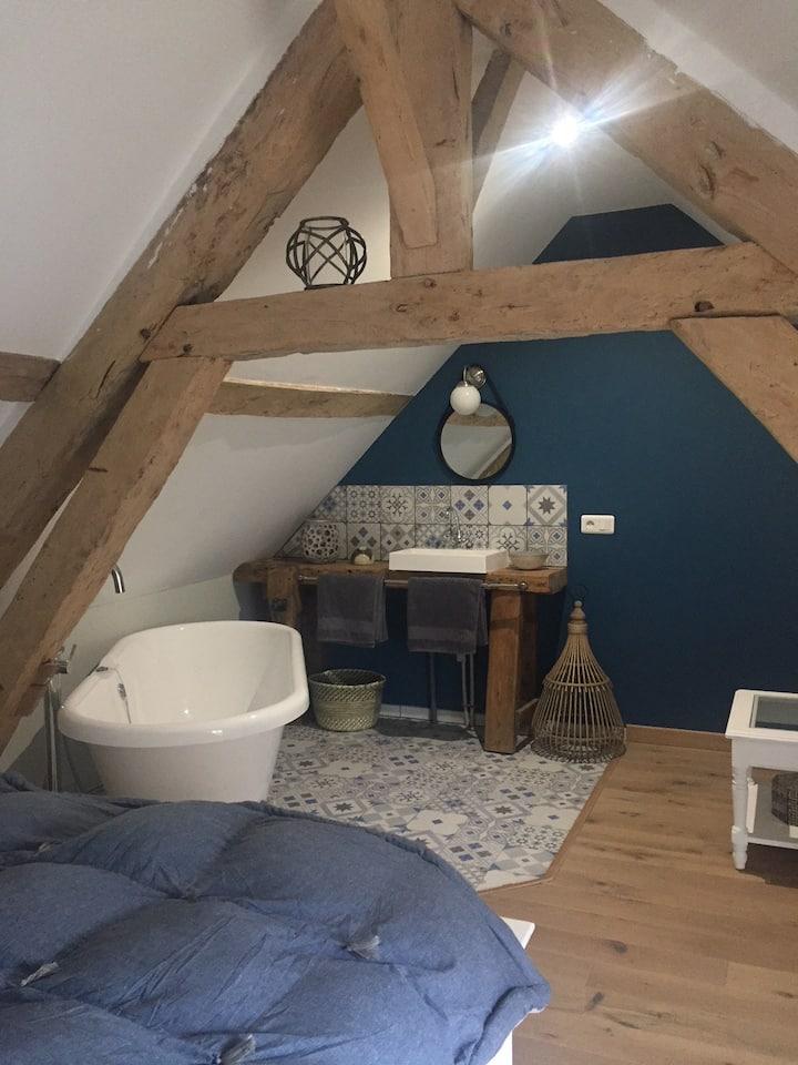 La grosse pierre - Gîte cosy - Châteaux / Beauval