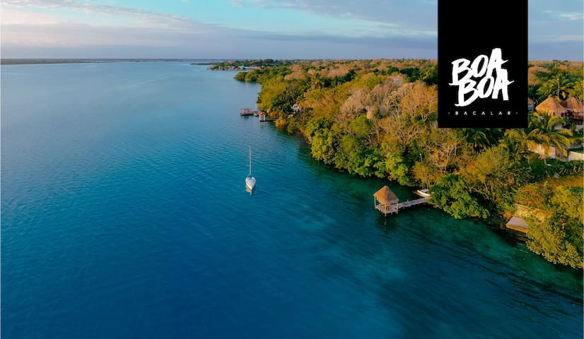 BOA BOA, Simply the best spot in Bacalar  / IGUANA