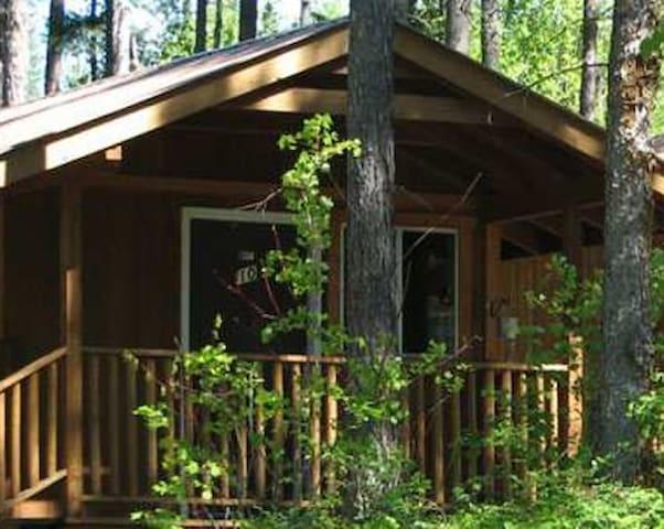 Pioneer Cabin 9 near Glacier National Park