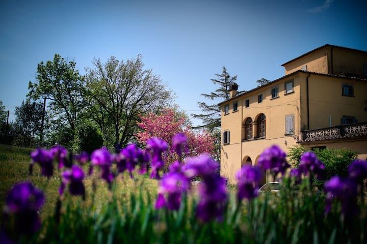 """""""Romantica-Studio in XVI c. Villa, Hilltop,Arezzo"""""""
