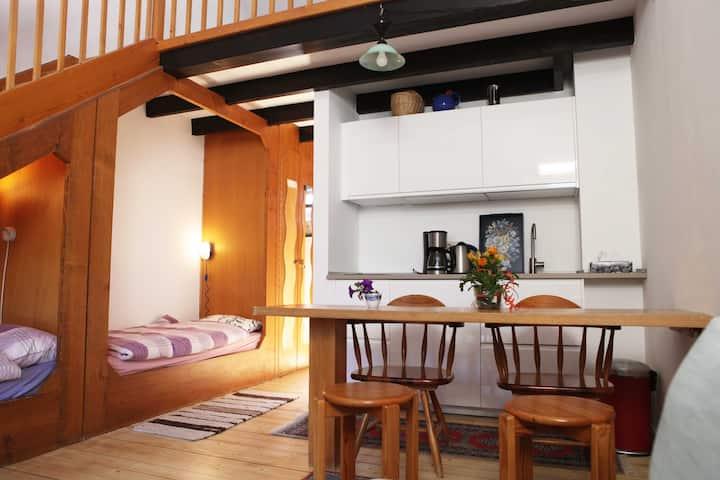 Gemütliches 5 Personen Apartment in Waldnähe