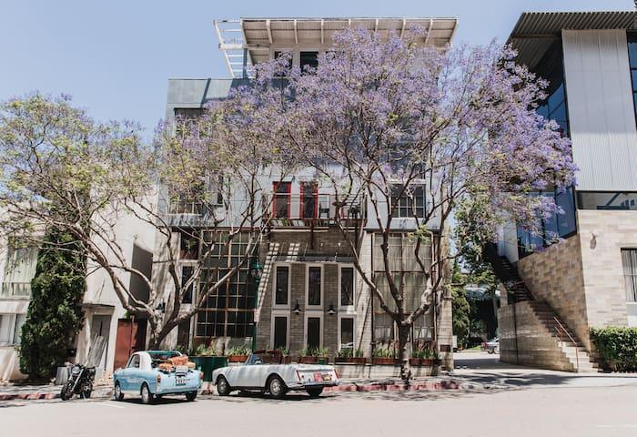 Urban Treehouse Jr - Location, Food & Drinks