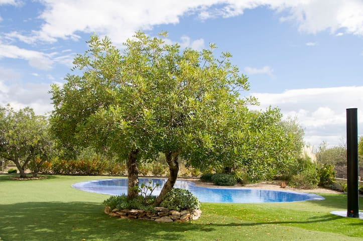 Quiet, beautiful finca surrounded by olive trees - L'Ametlla de Mar