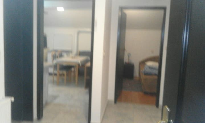Vujovic apartment 2