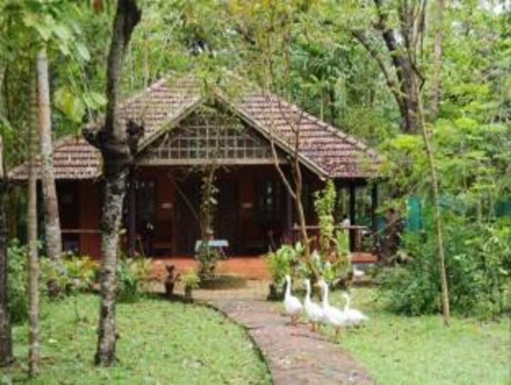 Vembanad Lake Villas Homestay