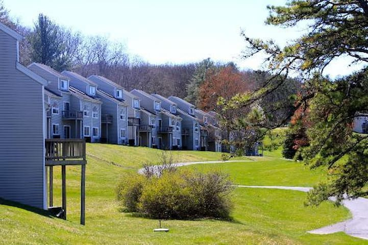 Pocono Mountain Villas Resort - Studio Deluxe