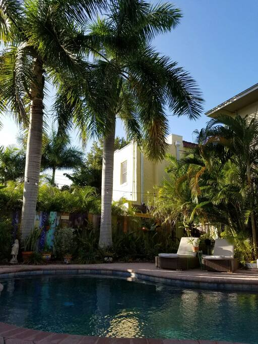 Spacious 1 Bedroom Apt Private Pool Apartments For Rent In Saint Petersburg Florida Us