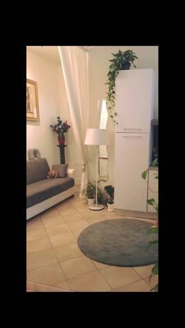 confortevole appartamento a san pietro - Roma - Apartment