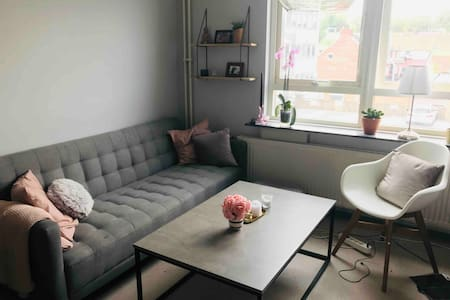 Studio apartment in Helsingborg centrum.
