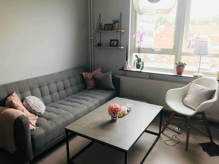 Studio apartment in Helsingborg centrum.