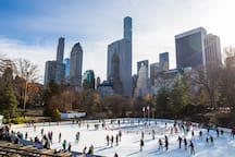 Walk to Central Park Wolman  Rink