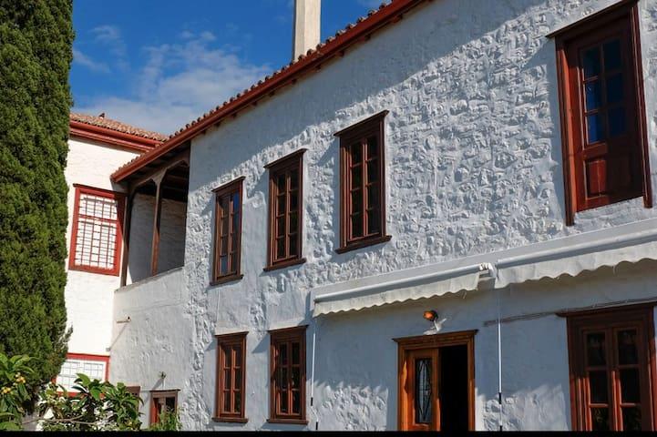 Olivieri House