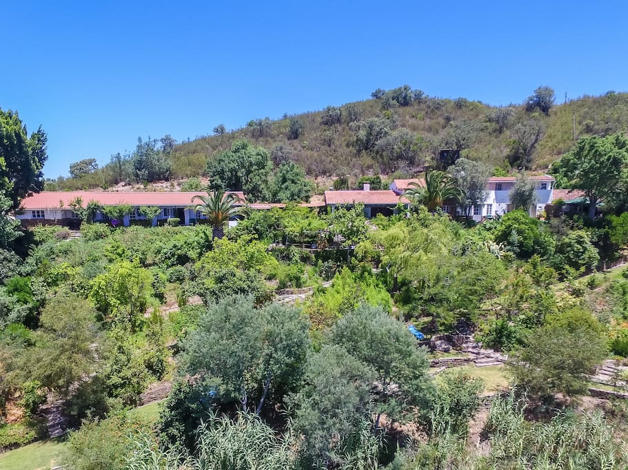 Drone view of the Quinta's lush gardens