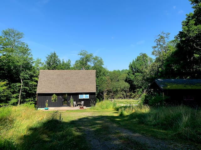 Fall Retreat Catskills Secluded Cabin in the Woods