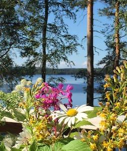 Vadelmala -Summer -Cottage - Muurame - Almhütte