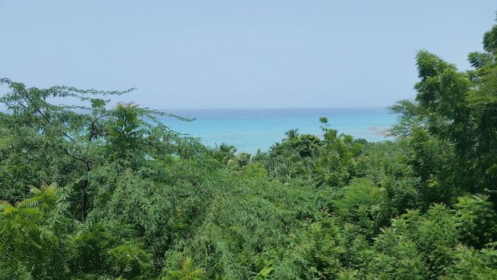 Near all Marigot, close to all major beaches