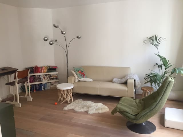 Couple or 2 friends - appartment with Cat!