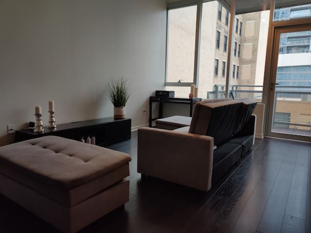 Beautiful Apartment Near Soldier Field