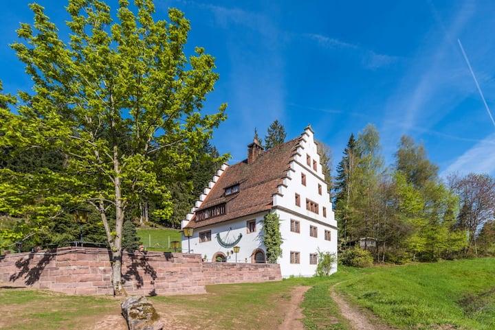 Herrschaftliches Herrenhaus Hofgut Bärenschlössle 1 - 3500 m2 - BBQ, Wlan, Historisch, top ausgestattet