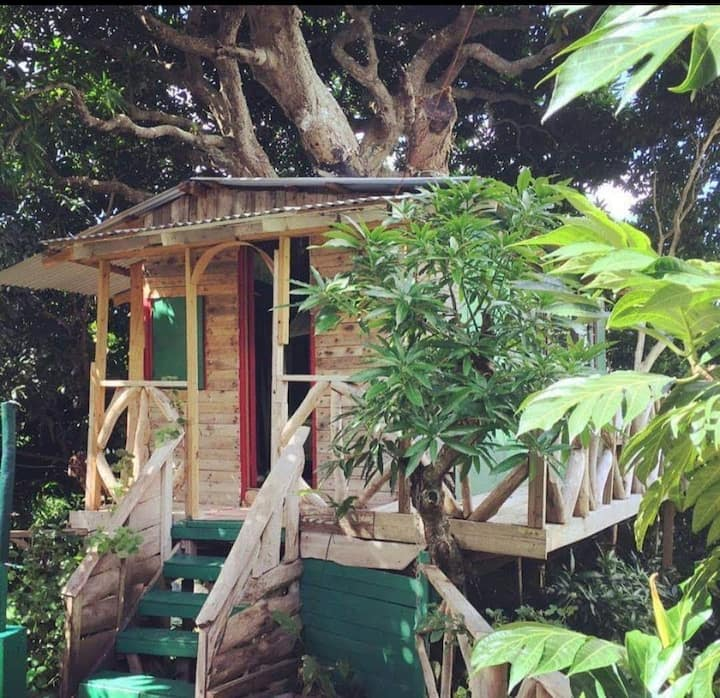 Treehouse at Prince Valley Farm
