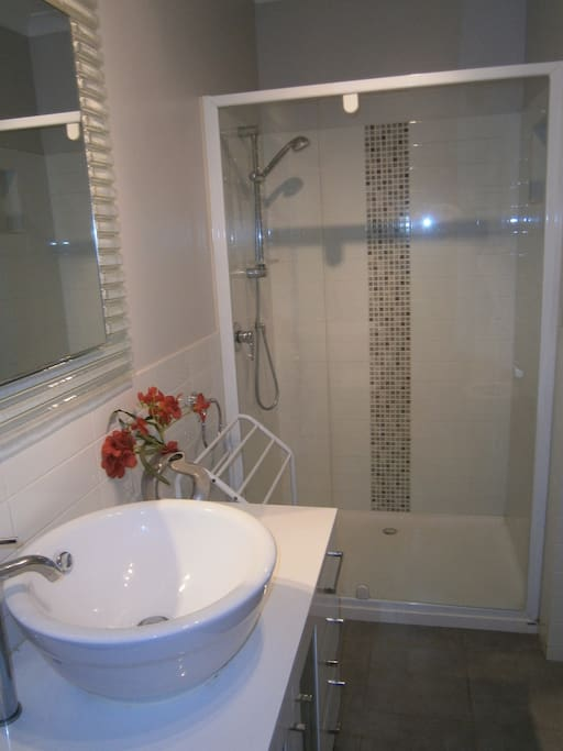 Large shower recess and vanity