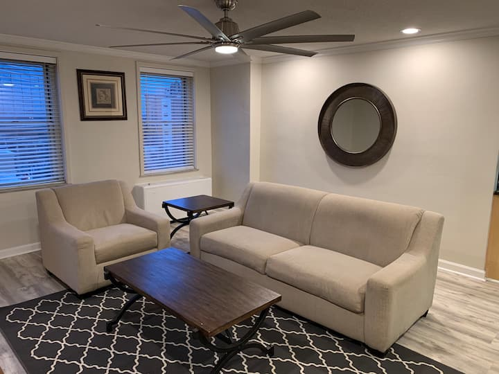 Downtown Condo 1 block from AmericasMart, sleeps 4