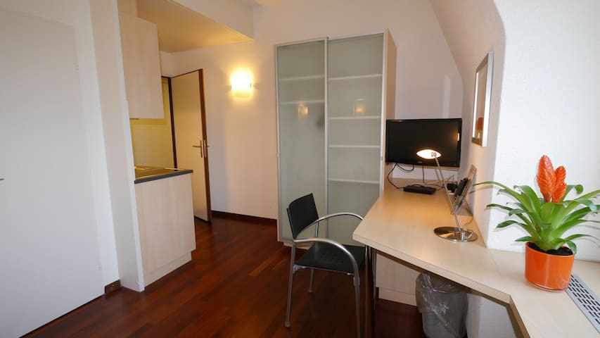 Accademia Apartments - furnished living - Zürich - Servicelägenhet